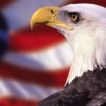 EEUU, reluctante constructor de naciones