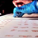 Más cerca de resolver el rompecabezas de los rollos del Mar Muerto