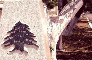 El cedro libanés.
