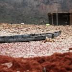 La tragedia de los cristianos en Oriente Medio: llámenlo genocidio