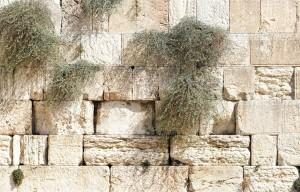 Muro de los lamentos (Jerusalén, Israel)