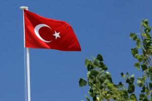 La bandera ondea sobre un árbol en Turquía